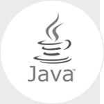 Java (JSP/Core)
